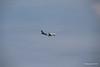 Air Transat A310 C-GFAT Inbound VCE 26-07-2015 11-20-03