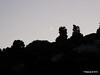 Moon Near Rumelian Castle Istanbul 19-07-2015 17-57-16