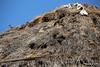 Birds Nests Mykonos Windmills PDM 03-05-2015 07-39-08