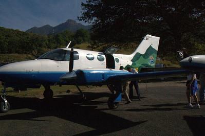 IMGP2950