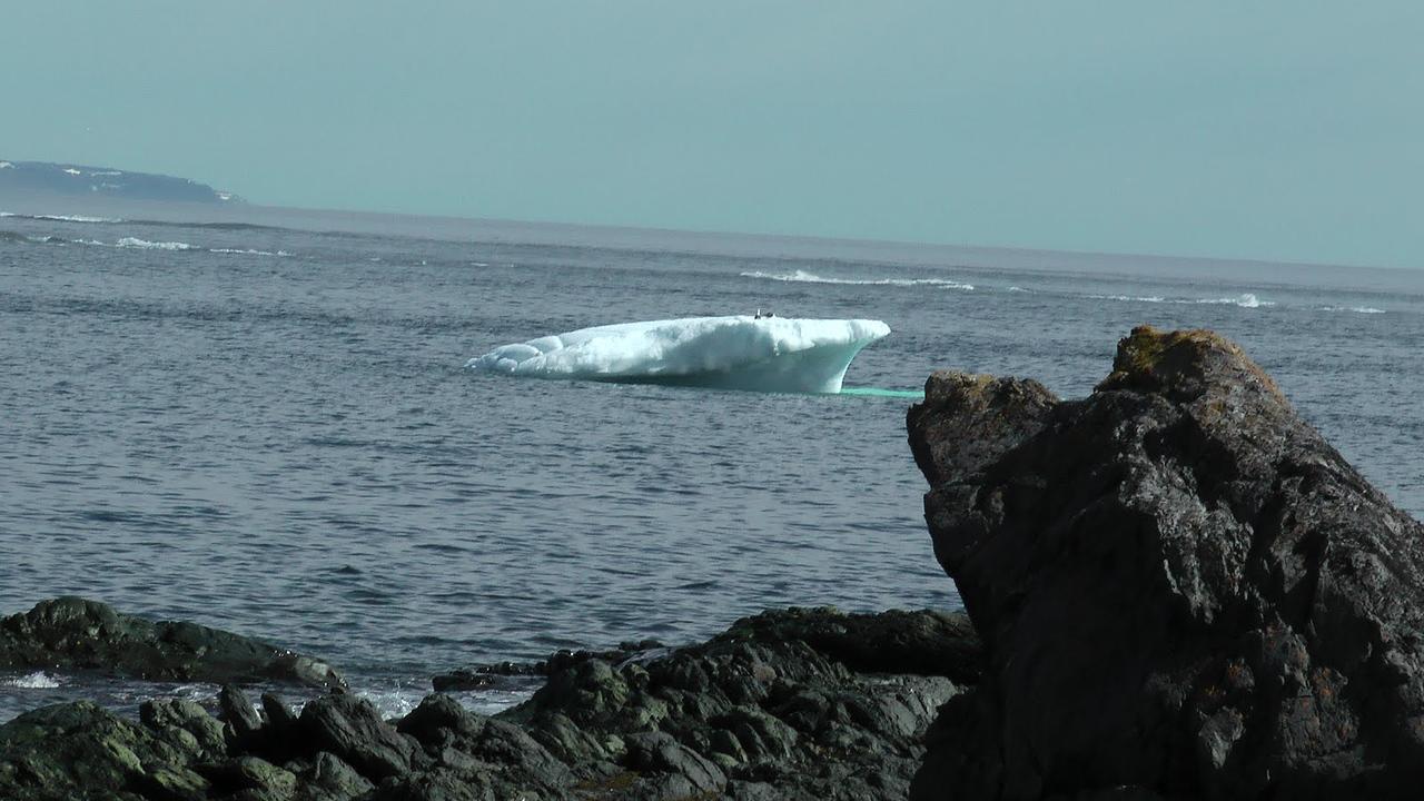 Icebergs! L'Anse aux Meadows, Newfoundland
