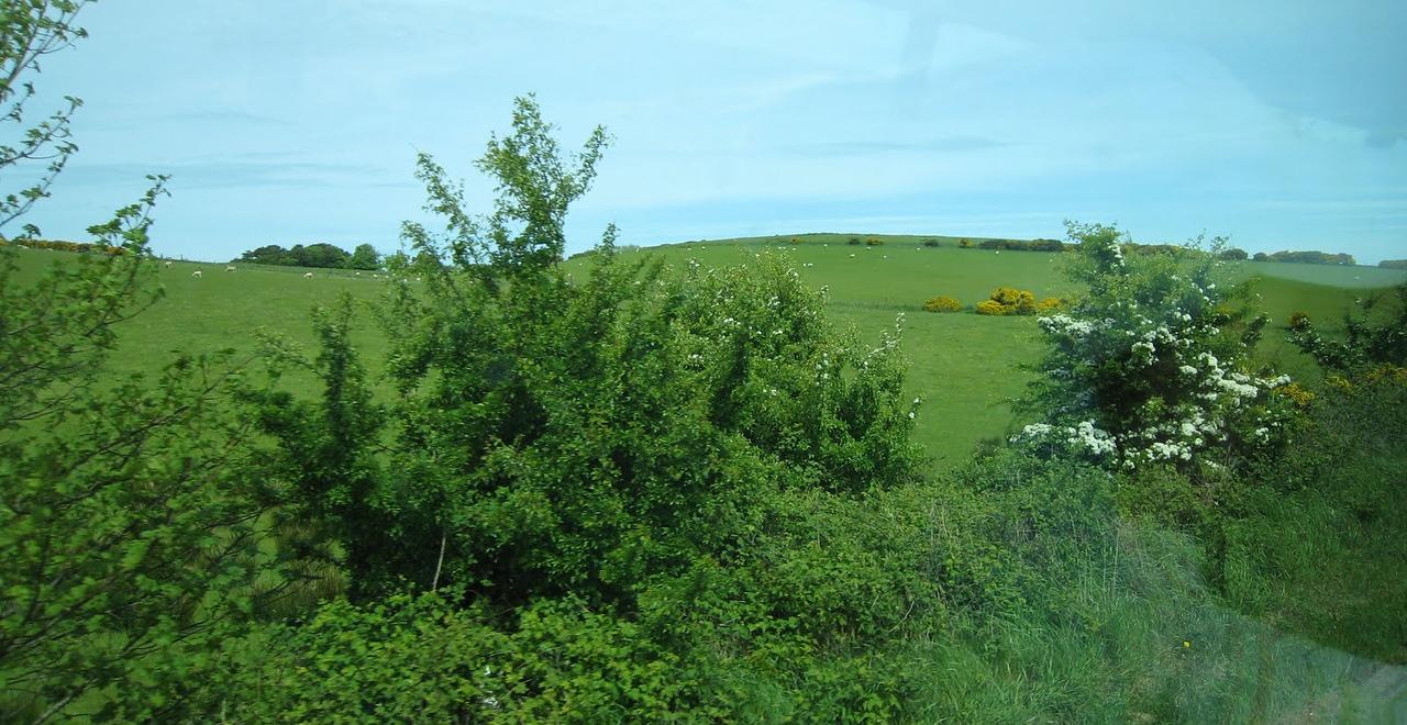 Northern Ireland Countryside