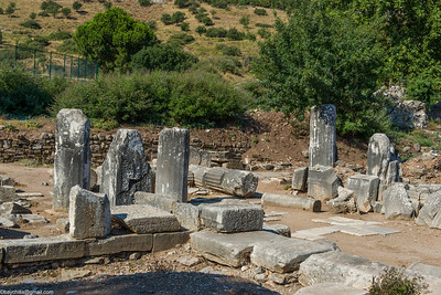 Stunted columns