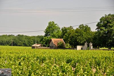 Petite maison dans la vigne.