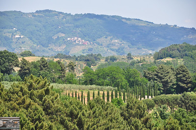 Even more of the Tuscan countryside.