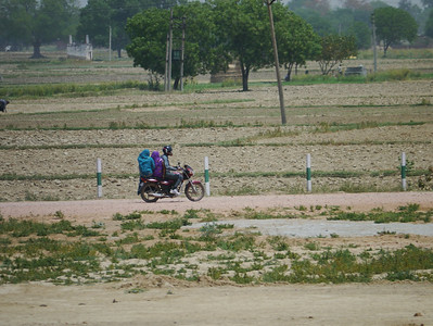 Preferred mode of transportation around India - notice the ladies have to sit side saddle!