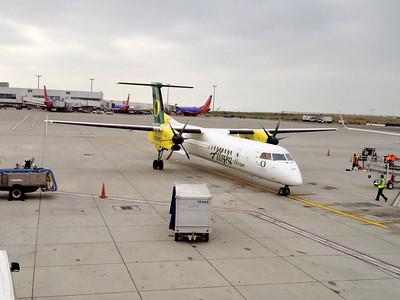 OSU Ducky plane
