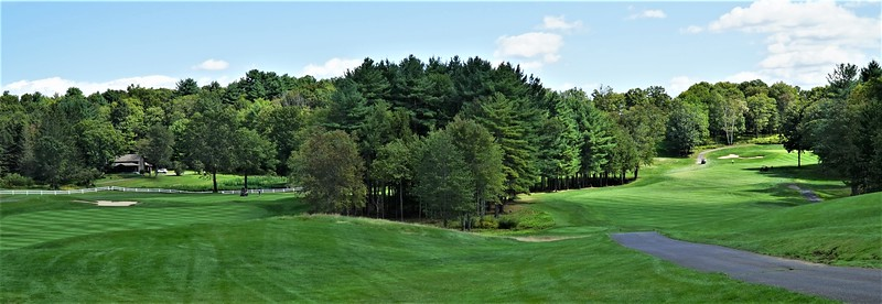 Holes #5 & #6 - 2 lush, rolling fairways, straddling a thick stand of evergreens