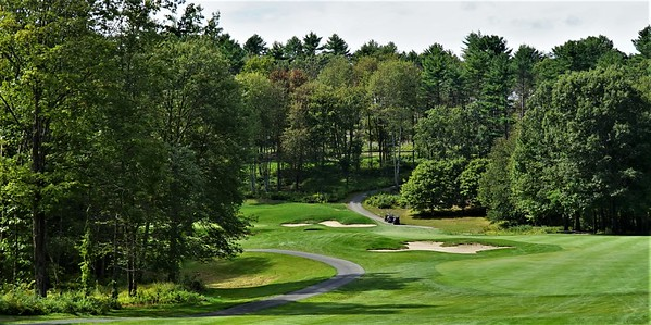 Hole #7 - a short downhill par 4, viewed from the tee, with the green hidden behind the trees on the left