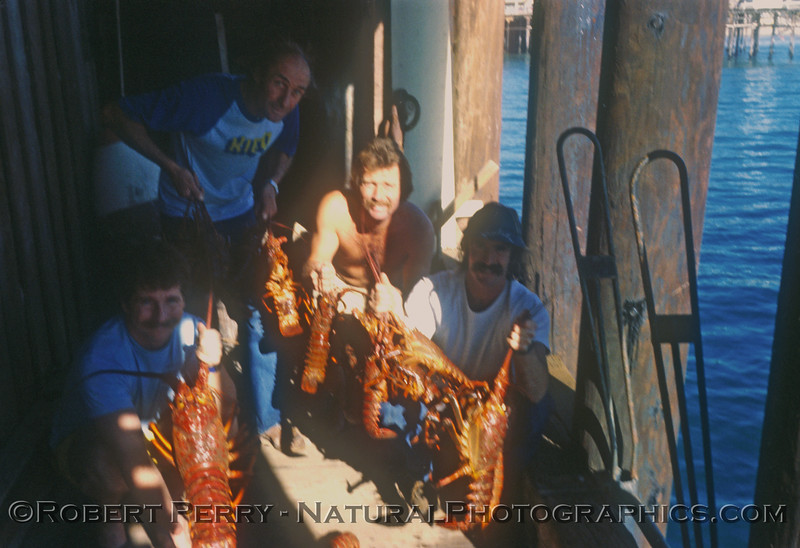 Bob, Yosh, Wayne and Steve.  One of those productive lobster dives in Santa Monica Bay back in the 1970's.