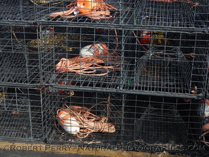 Lobster traps staging area Panulirus interruptus 2014 09-23 SB Harbor-029