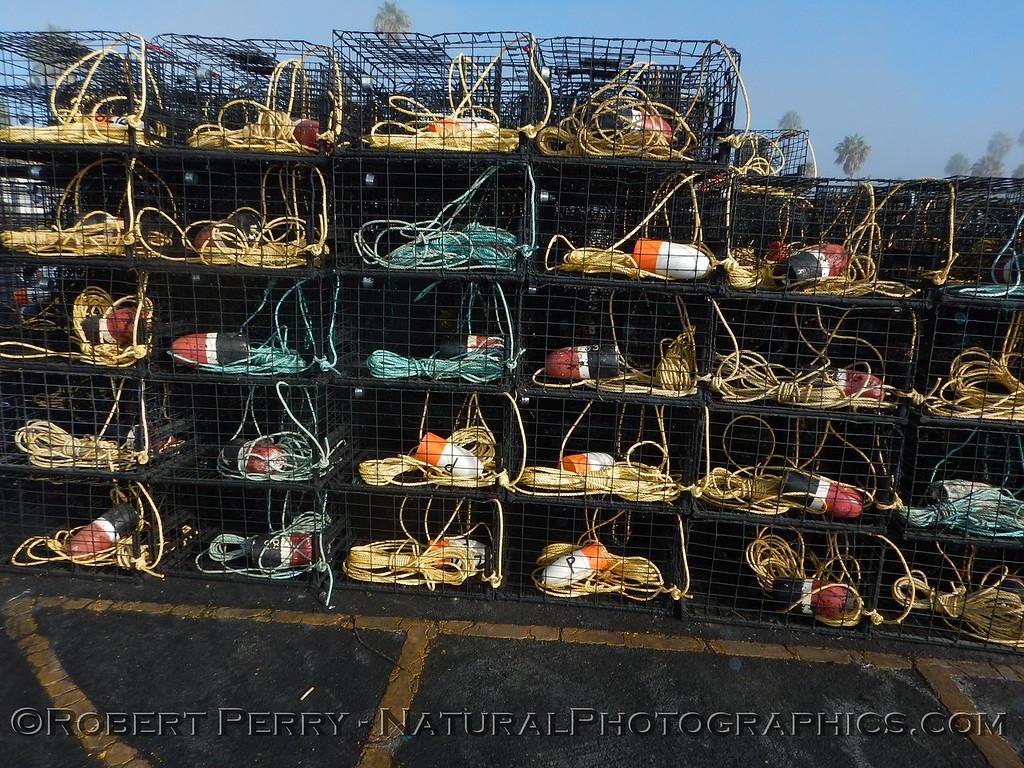 Lobster traps staging area Panulirus interruptus 2014 09-23 SB Harbor-021