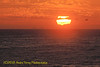 906-Andre-Sunset from the long lens
