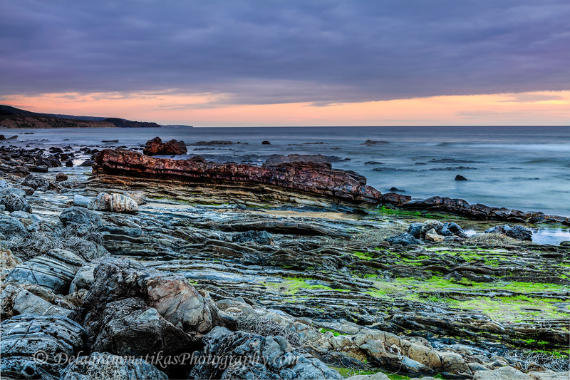 20170320_Crystal Cove SP_0684