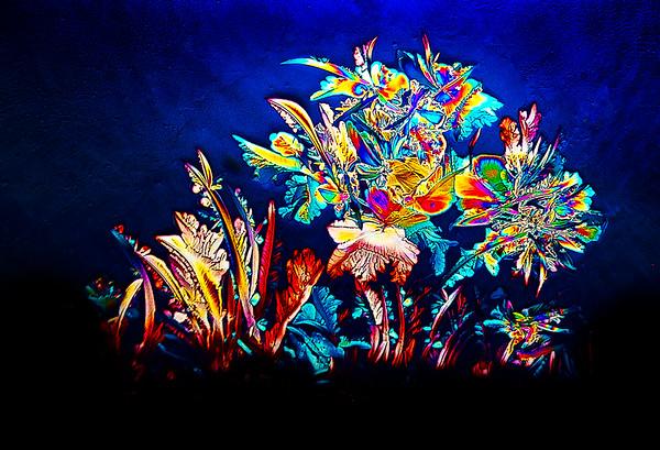 """Flower Arrangement"""