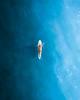 Vitamin Sea-