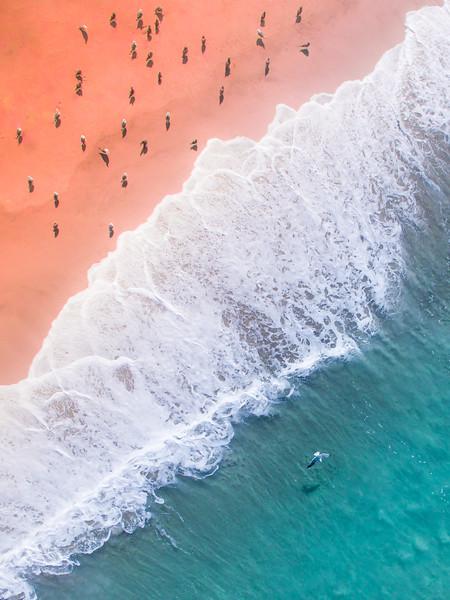 Waves like Petals-