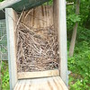 Box 5 - Partial House Wren nest