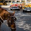 012_012_2016_Havana_Cuba_-63351