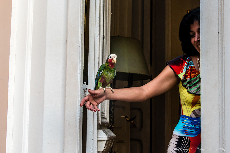 Cuba was about its colourful, and sometimes quirky, people