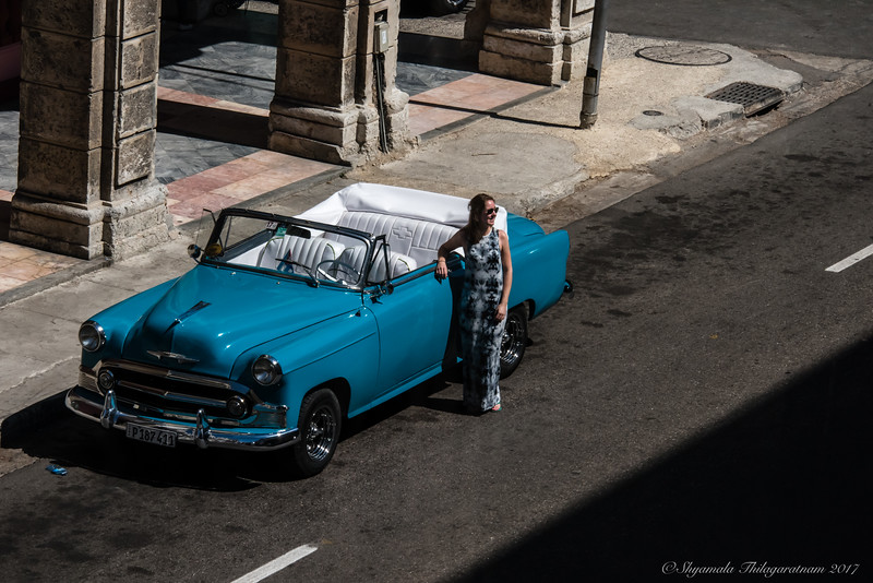 Another car fan