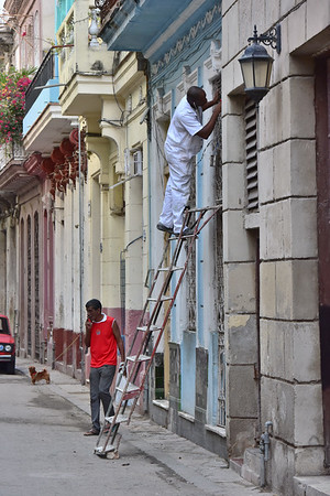Painter in Havana