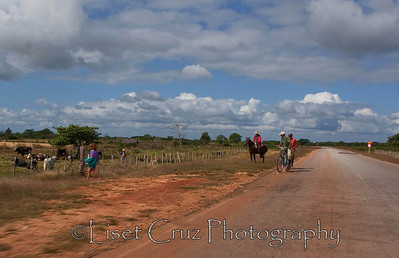 Somewhere in the countryside, between Pinar and Cienfuegos.  Cuba.