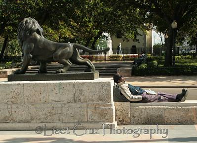 leon de la colonia, cubano del milenio