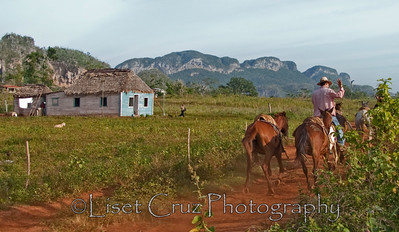 A cowboy in Viñales, Pinar del Rio, Cuba. Photo by Liset Cruz Garcia.