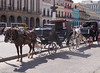 More Cuban taxis.  Most horses did not look this good.  They were usually very skinny and pathetic looking.