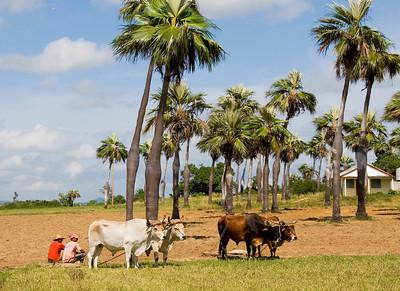 West of Havana, Cuba