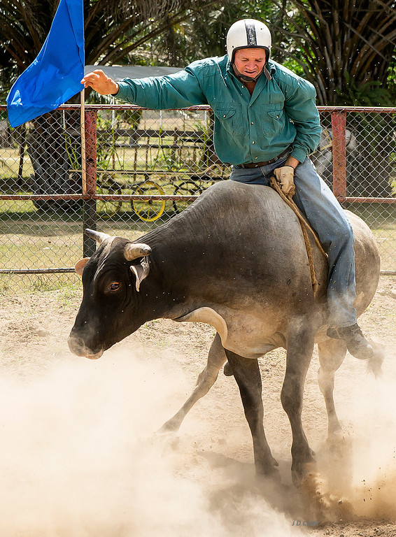 Bull riding, King Ranch rodeo, Cuba