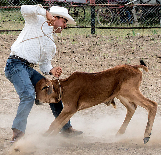 Rodeo event, King Ranch, Cuba