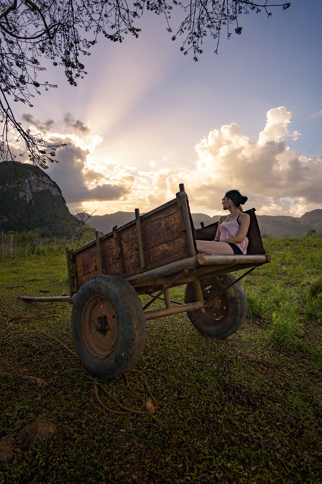 Wagon with a View