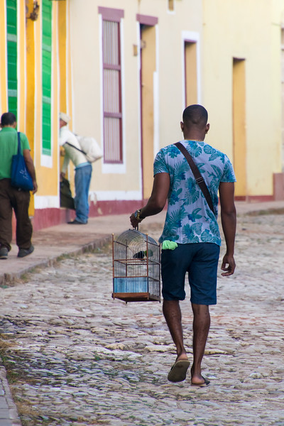 Cubans carry their bird cages with them often. When I asked why, it was that they are considered cherished pets and will often be taken to work to keep them company.