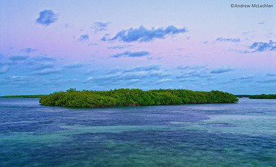 Dawn over Mangroves on Cayo Santa Maria