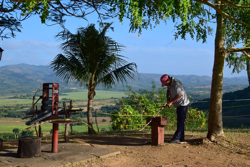 Valley of the Sugar Mills overlook. Trimming the cane before putting it through the hand mill.