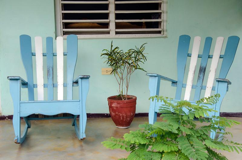 blue&whitechwplantscuba.jpg