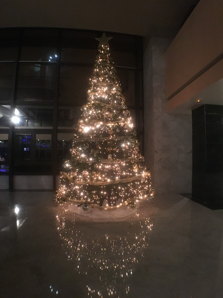 Started to look a bit like Christmas at the hotel finally!