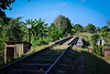 The original tracks were laid in the 1880s to transport sugar from the valley to the port at Casilda on the coast near Trinidad. Today the aging train carries only tourists and locals.