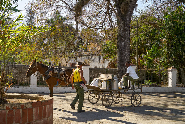 workmen and horse cart, Pepito Tey, Cuba