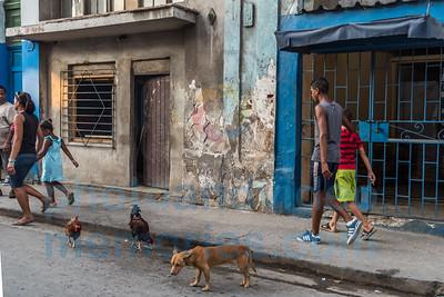 160428-Cuba-1436
