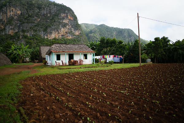 2015, Cuba, on the road to Vinales