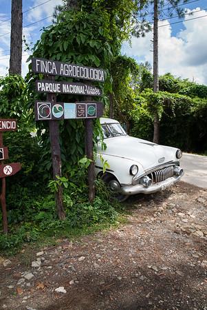 2015, Cuba, Vinales