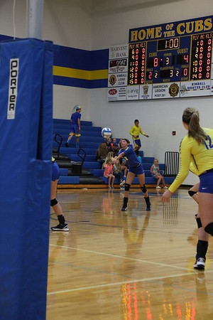 Cubs Volleyball 2016