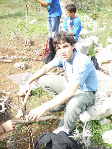 VS Rubei...gathering a bit of wood..