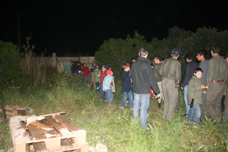 cubs walking into the campfire area