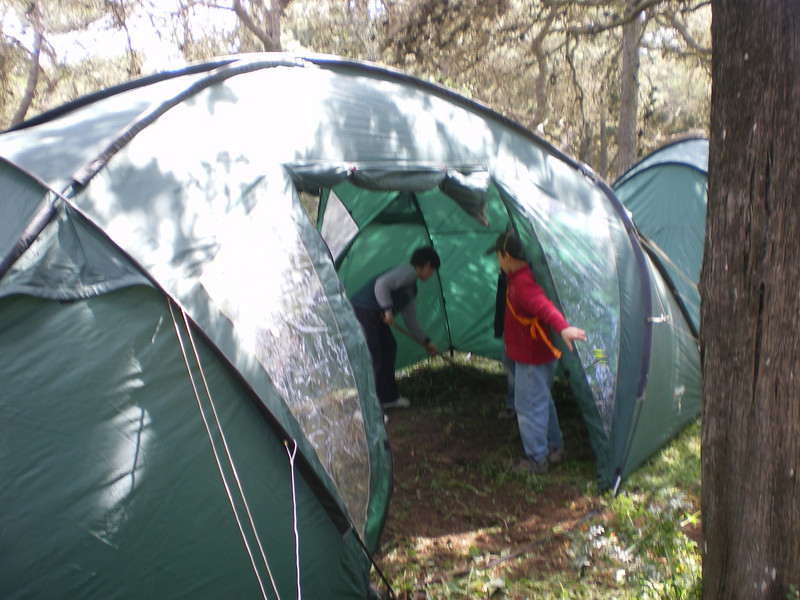 raking the ground inside their tent...so they sleep well ;)