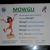 ATTN: MOWGLI CALLING!