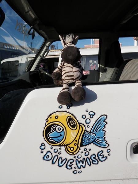 Noah sitting on the Divewise van